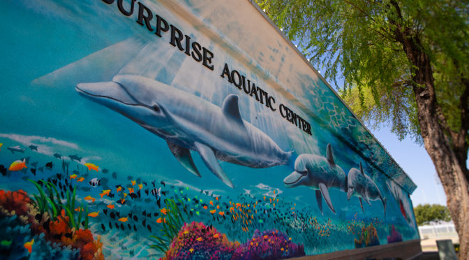 A mural of swimming dolphins.